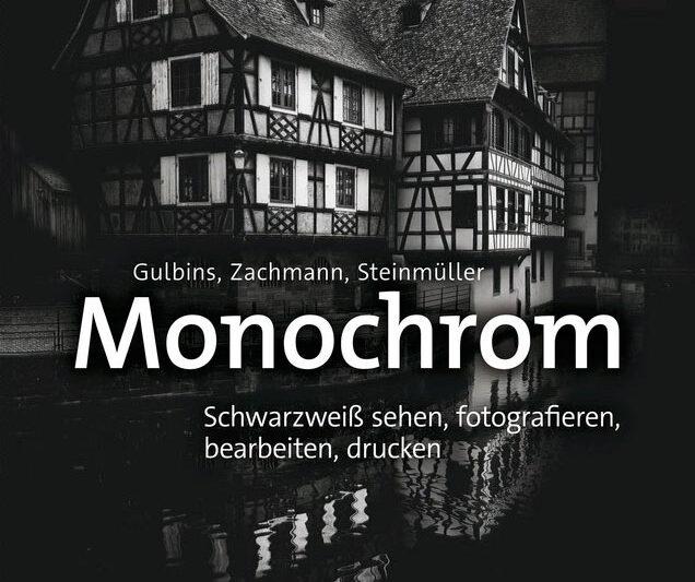 «Monochrom» von Gulbins, Zachmann, Steinmüller aus dem dpunkt-Verlag