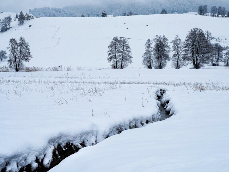 Chrebsbach beim  Hüttnersee