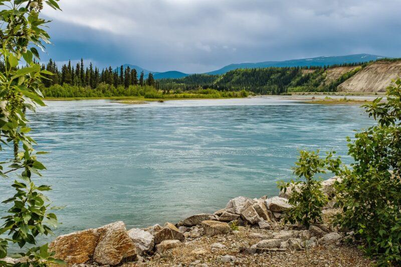 Am Ufer des Yukon Rivers beim Liegeplatz der S.S. Klondike in Whitehorse, Yukon