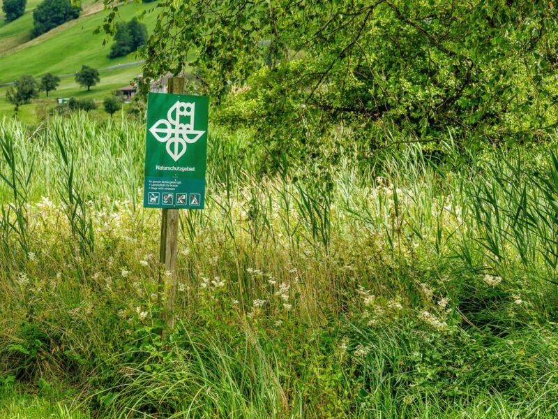 Hinweistafel zum Naturschutzgebiet, 1/110 f11